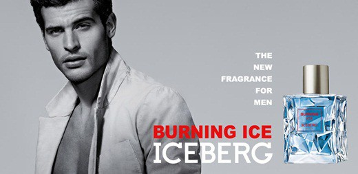 Iceberg-Burning-Ice.jpg