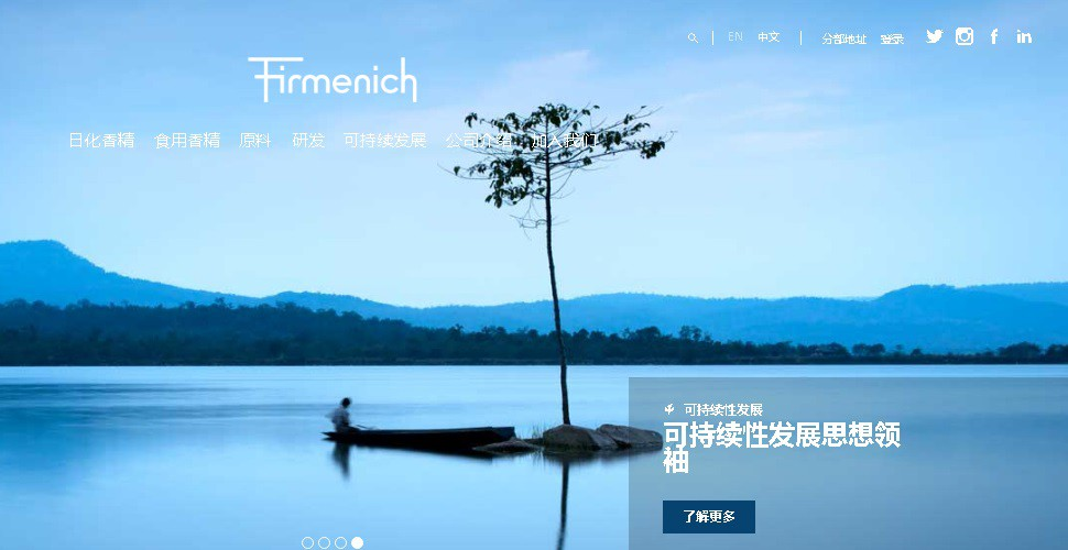 8_Firmenich website of China.jpg